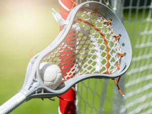 Best Lacrosse Sticks