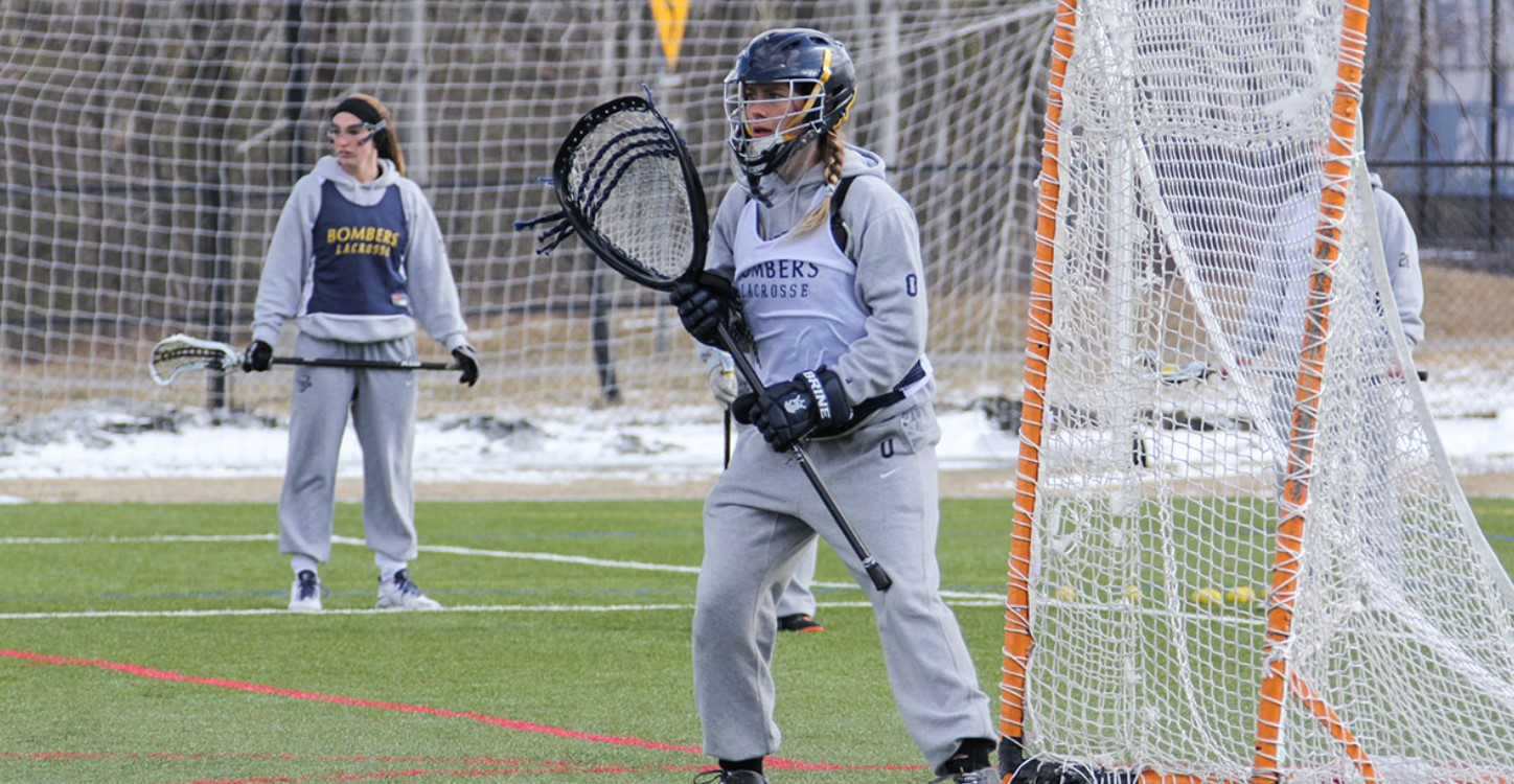 Ideal Dimensions of Lacrosse Goal